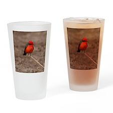 Vermilion Flycatcher Bird T-Shirt Drinking Glass