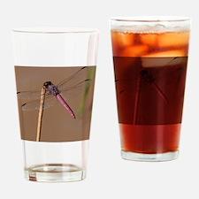 Roseate Skimmer Drinking Glass
