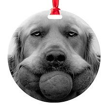 3 BALL DOG Ornament