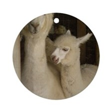 Llama Mama and Child Round Ornament