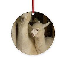 Llama Mama and Child Round Ornament
