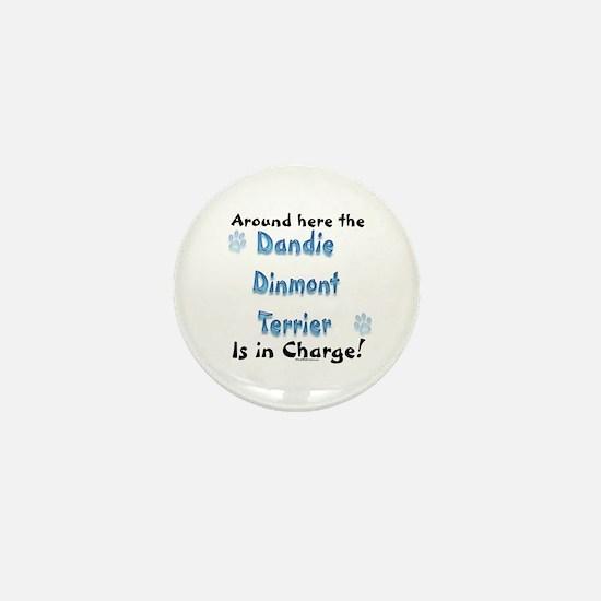 Dandie Charge Mini Button