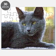 Gray Cat Puzzle