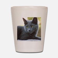 Gray Cat Shot Glass