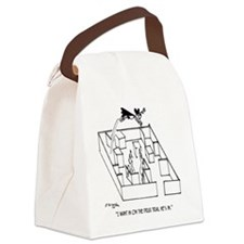 4664_lab_cartoon Canvas Lunch Bag