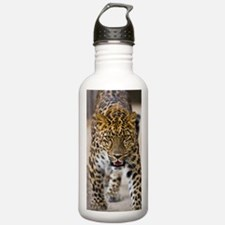 leopardrunningweb Water Bottle