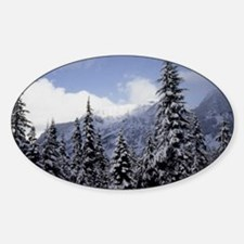 Fresh Snow Snoqualmie Pass 4a Decal
