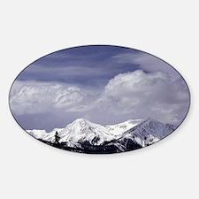 Colorado Rocky Mountains 7-ALT Decal