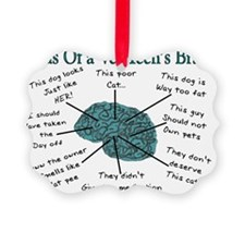A Vet Techs Brain Ornament