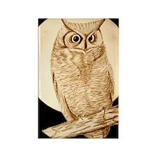 owl1 Rectangle Magnet