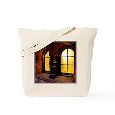 2010c-002-12x12-P Tote Bag