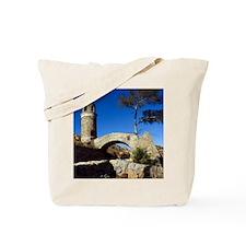 2008c-006-12x12-P Tote Bag
