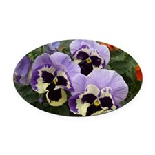 Multi colored Pansies Oval Car Magnet