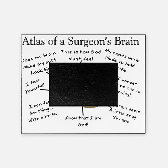 Atlas of a Surgeons Brain Picture Frame