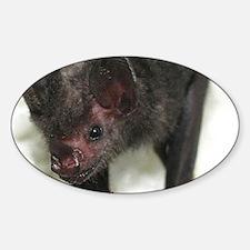 Lil-Drac-calendar Sticker (Oval)