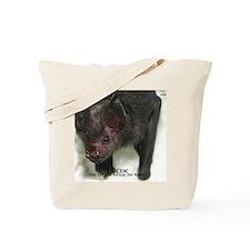 Lil-Drac-calendar Tote Bag