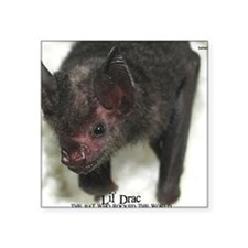 "Lil-Drac-mousepad Square Sticker 3"" x 3"""