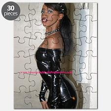fe15 Puzzle