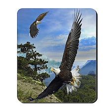 eagles1 Mousepad