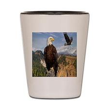 eagles2 Shot Glass