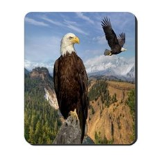 eagles2 Mousepad