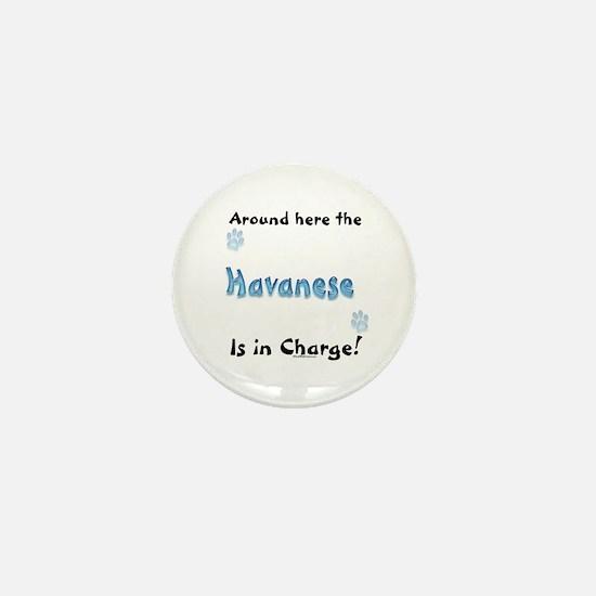 Havanese Charge Mini Button