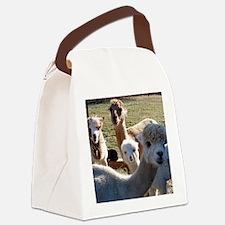 ALPACA FAMILY PORTRAIT III Canvas Lunch Bag