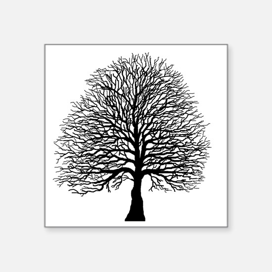 "Oak tree Square Sticker 3"" x 3"""
