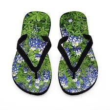 Bluebonnets Flip Flops