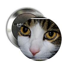 """cat whisperer2 2.25"""" Button"""