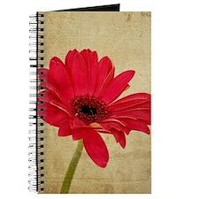 Red Gerbera Daisy Journal
