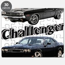 AD31 CP-24 Puzzle