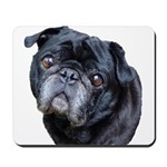 BJ Pug Mousepad