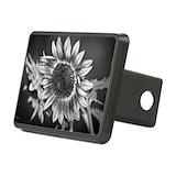Sunflowers Rectangle