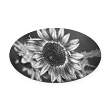 Black and White Sunflower Oval Car Magnet