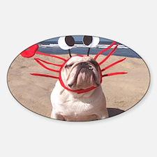See Food Diet Sticker (Oval)