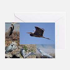 calendar2012_11-5x9_1 Greeting Card