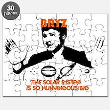 Bryz.gif Puzzle