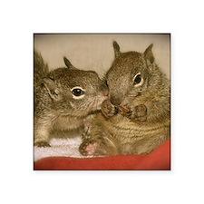 "babysquirrelsmousepad1 Square Sticker 3"" x 3"""
