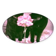 Flower kitties Decal