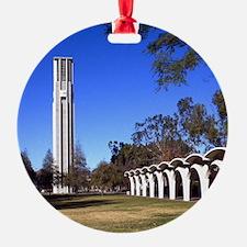 2011c-007-12x12-P Ornament