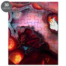 Fire-Agate-Quartz-iPad 2 Puzzle
