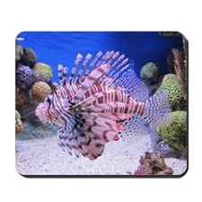 SALT WATER FISH Mousepad