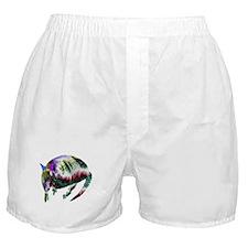 NEON ARMADILLO Boxer Shorts