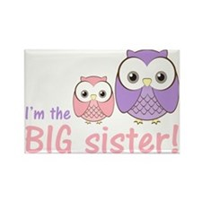 owlbigsispurplepink Rectangle Magnet