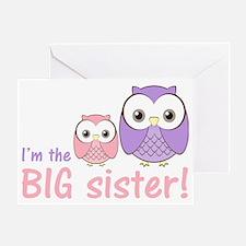 owlbigsispurplepink Greeting Card