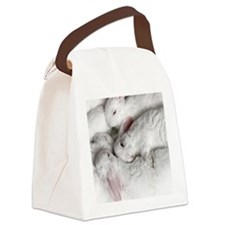 01-January-babies Canvas Lunch Bag