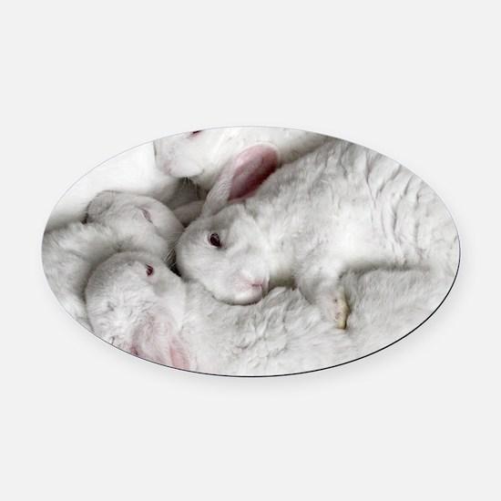 01-January-babies Oval Car Magnet