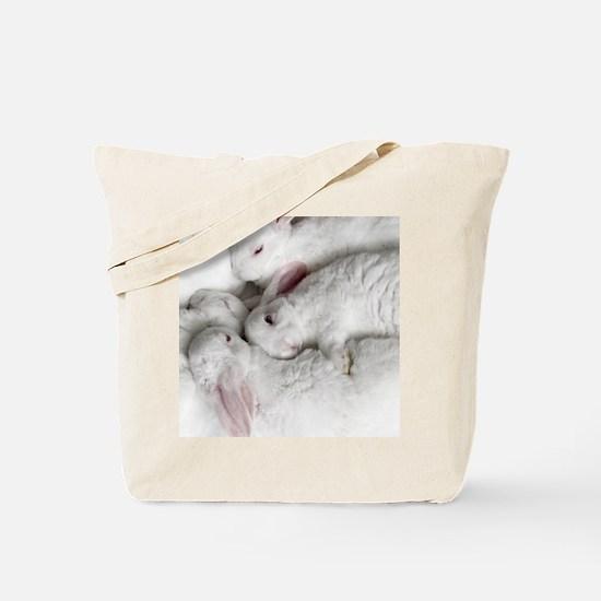 01-January-babies Tote Bag