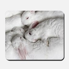 01-January-babies Mousepad
